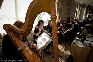 Elegant Music Quintet