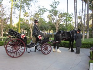 Disneyland Hotel Wedding. Horse drawn Carriage