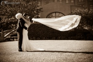 Wedding Photography by Jen O'Sullivan