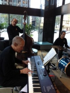 "Elegant Music Jazz Trio / Star Trek Jazz Trio performing ""Vulcan Swing"""