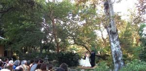 Wedding Ceremony @ Japanese Garden Pasadena, CA