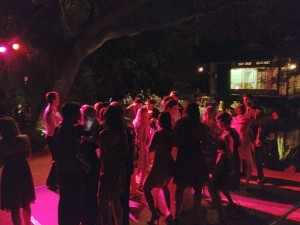 Wedding reception ancing under the oak trees.  Eric Zimmermann DJ/MC