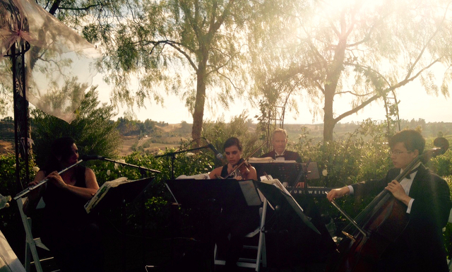 Elegant Music Quartet @ Falkner Winery Temecula
