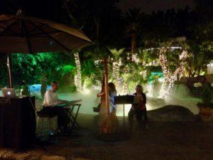 Trio: Violin, Harp and Keyboard. Backyard party in San Marino, CA