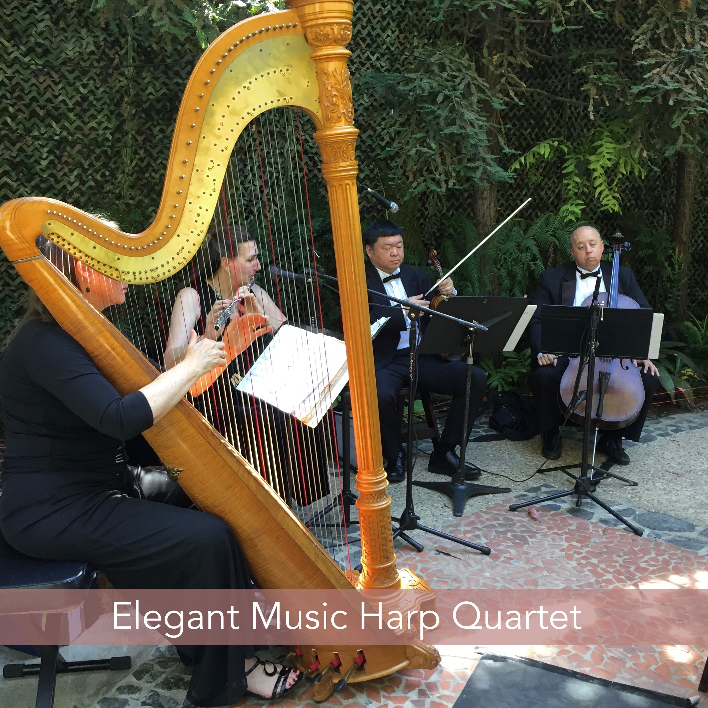 Elegant Music Harp Flute Violin Cello Quartet