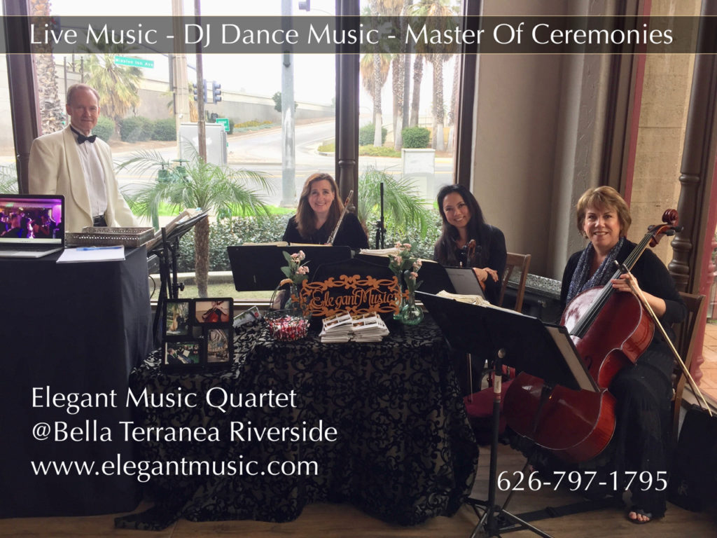 Elegant Music Quartet
