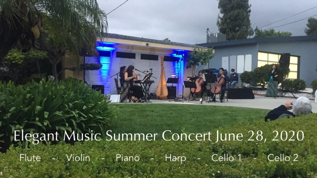 Neighborhood Concert by Elegant Music